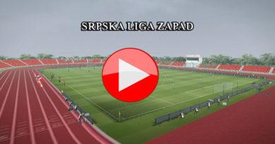 Srpska liga Zapad 23.kolo (video)