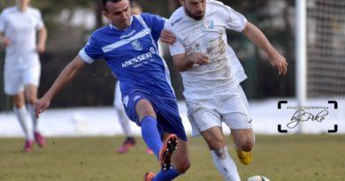 Srpska liga Zapad 19.kolo (video)