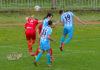 Srpska liga Zapad 20.kolo (video)